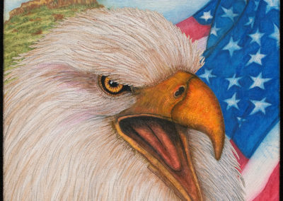 EAGLE, US FLAG & CAP ROCK – IMQE – 18″ X 18″