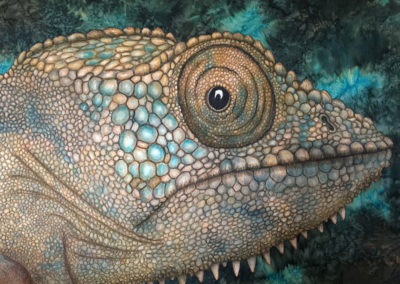 CHAMELEON – THE EYES HAVE IT – 30″ X 40″