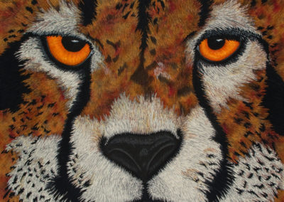 CHEETAH – THE EYES HAVE IT – 30″ X 40″